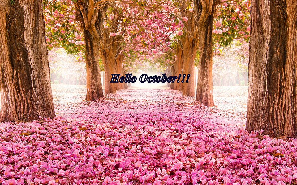 Beautiful Hello October Images Free Download