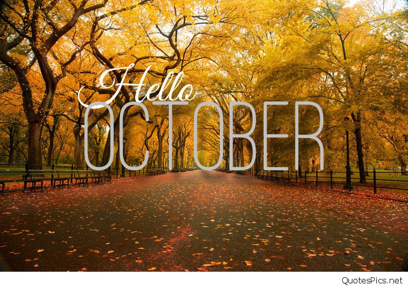 Hello October Photos