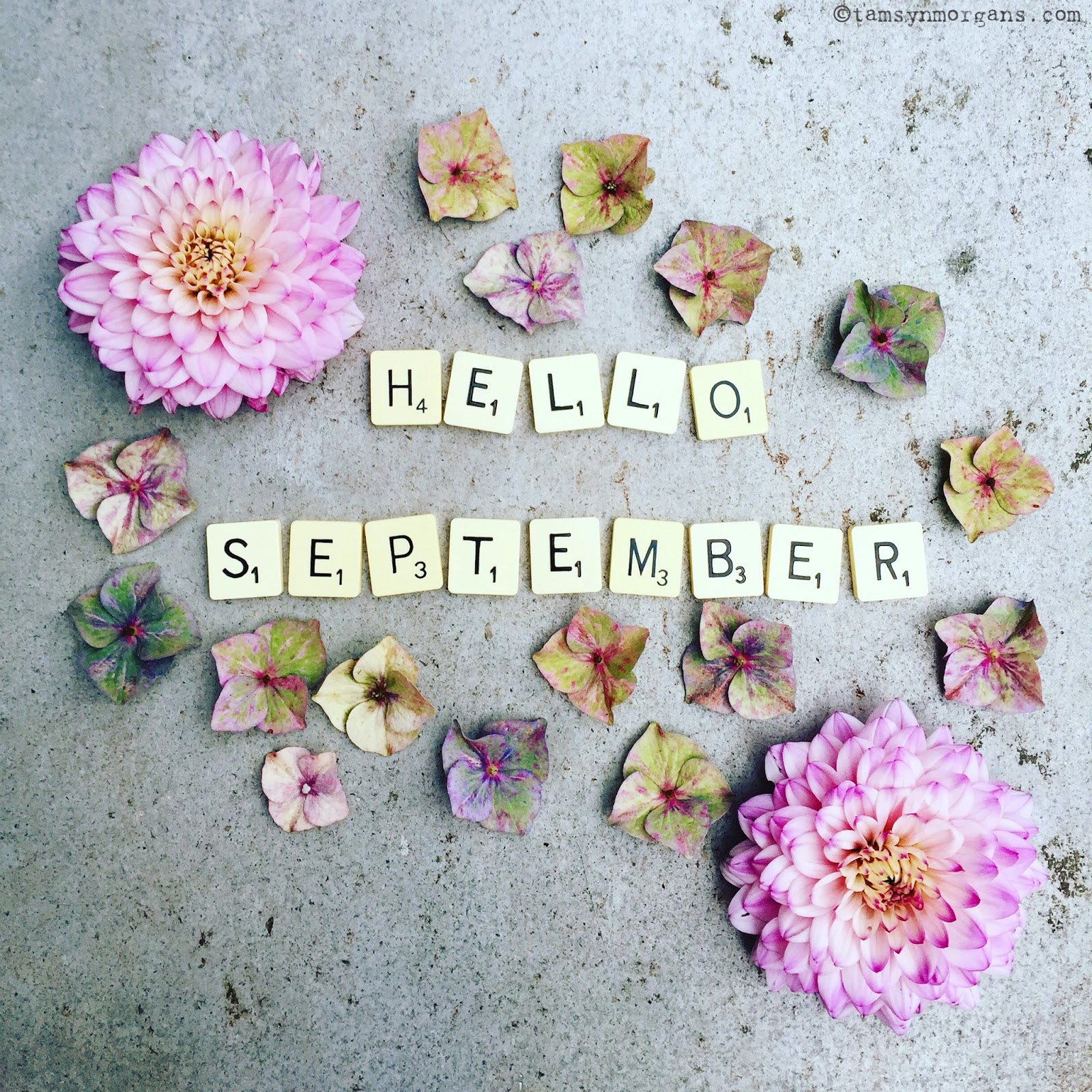 Hello September Images For WhatsApp