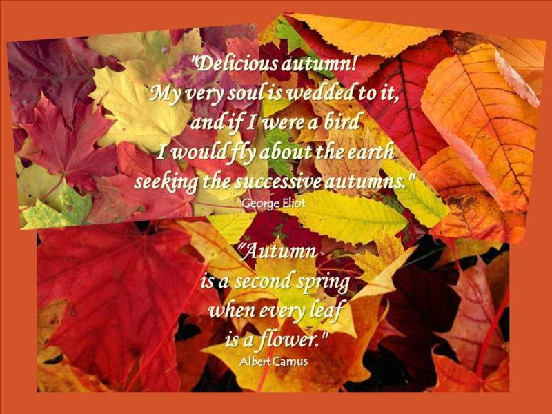 Welcome September Autumn Quotes