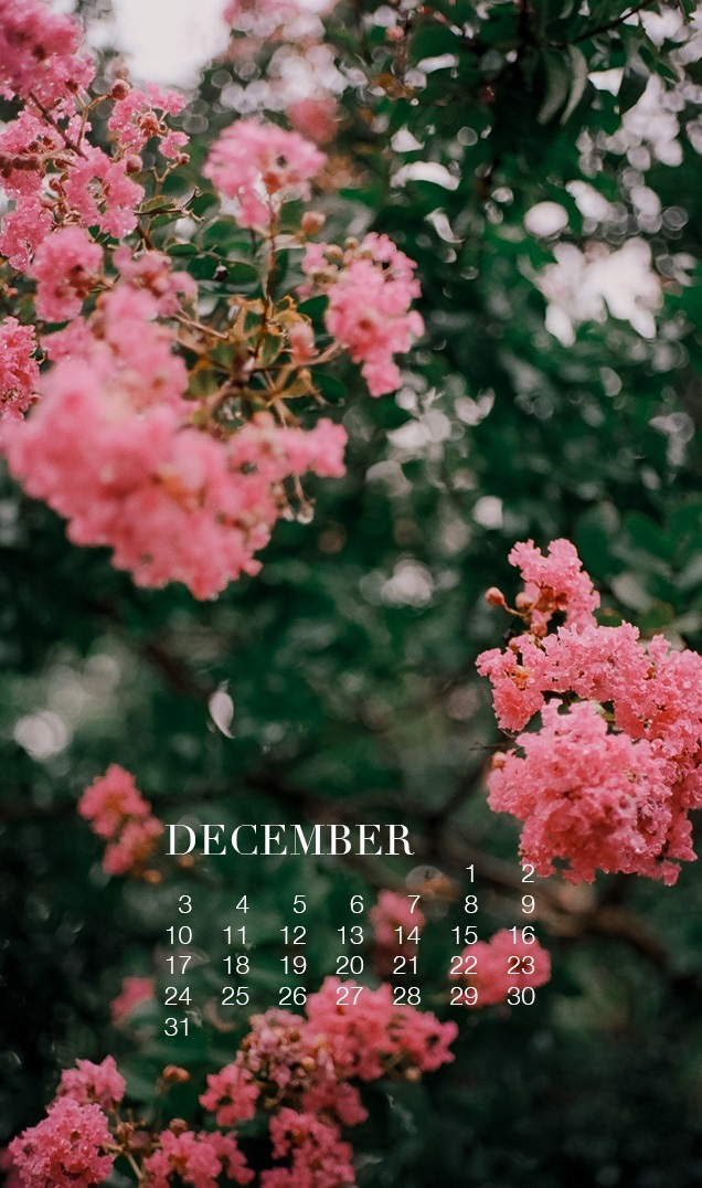 December 2018 Mobile Home Screen Calendar