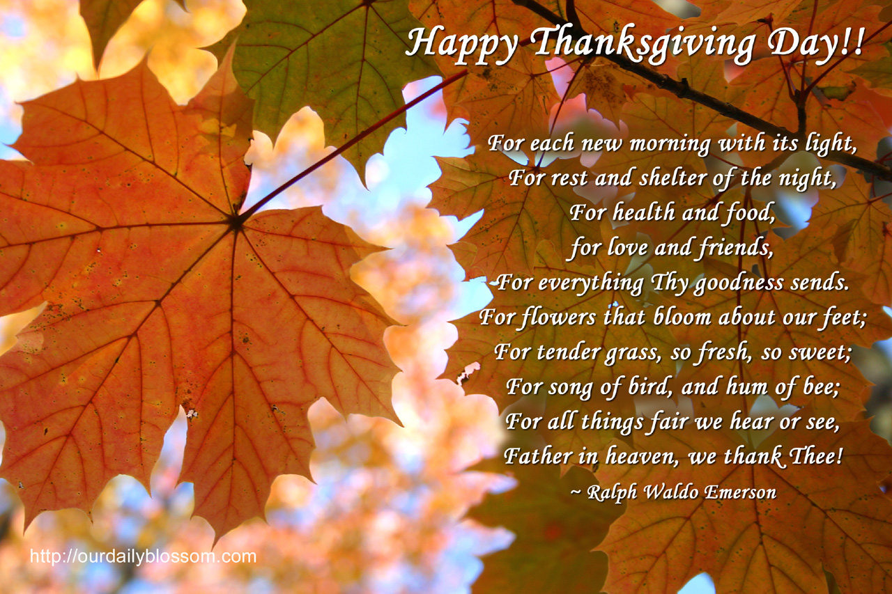 Happy Thanksgiving Pictures And Sayings