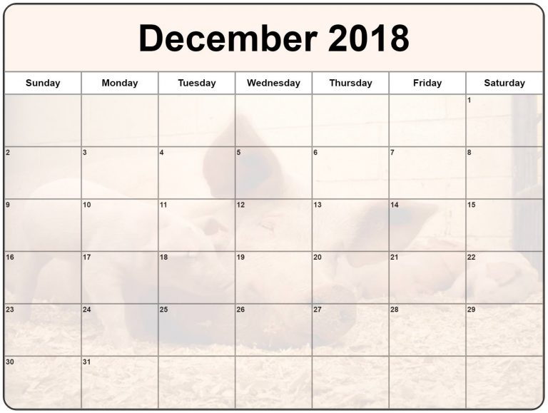 Professional December 2018 Monthly Canada Calendar