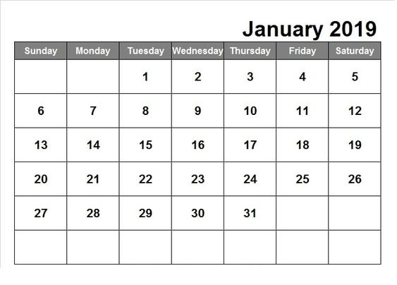 Professional January 2019 Calendar Template Schedule