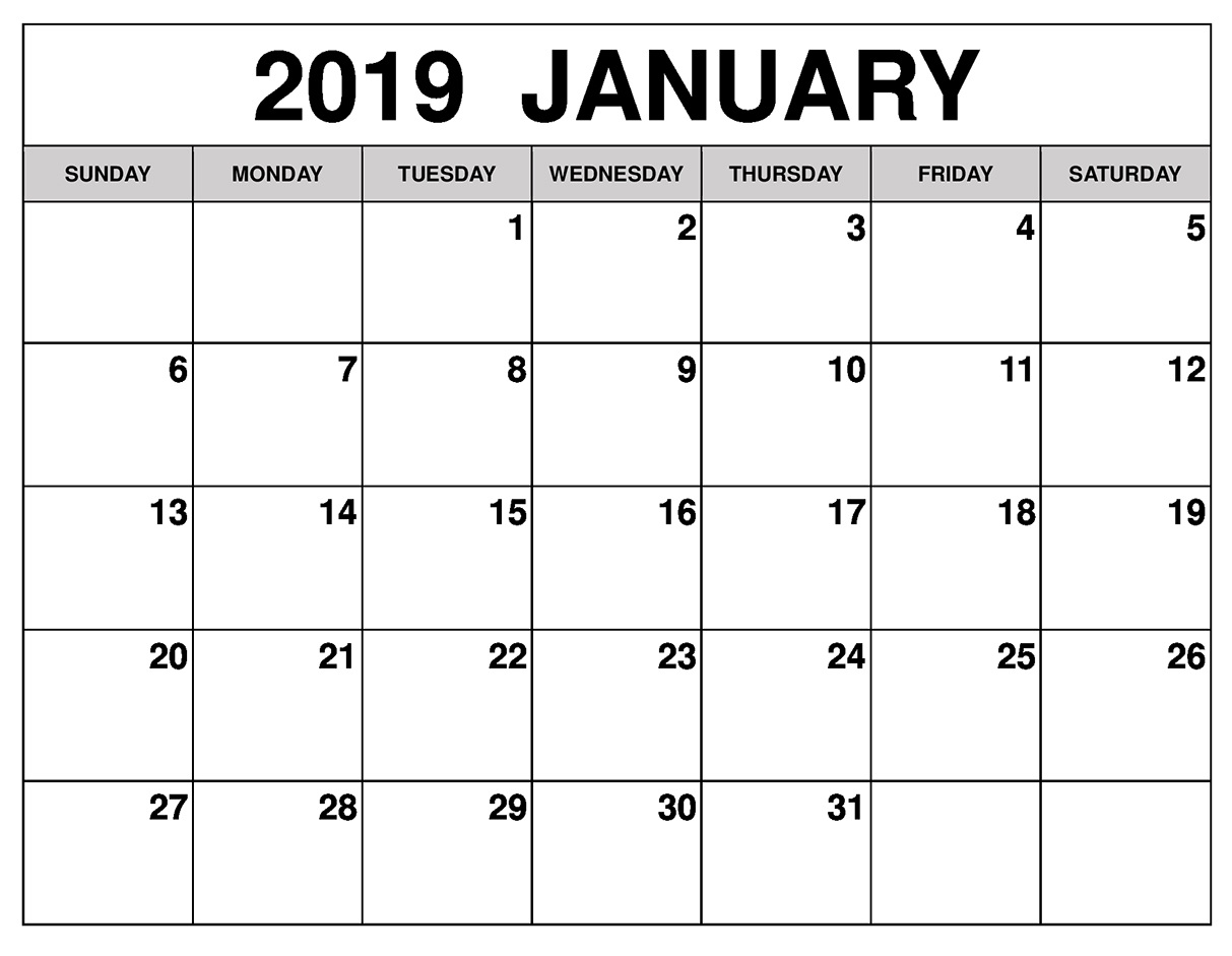 Blank Customized Calendar January 2019