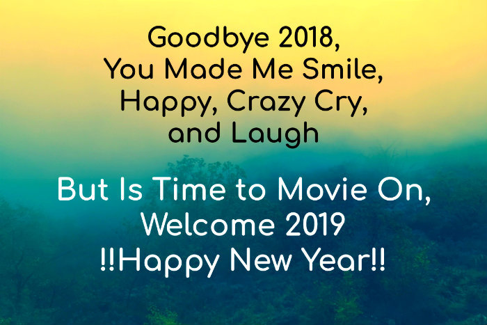 Goodbye 2018 Welcome 2019 Status