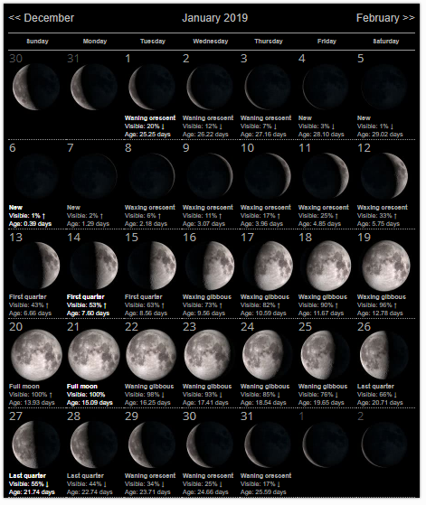 January 2019 Calendar Moon Phases