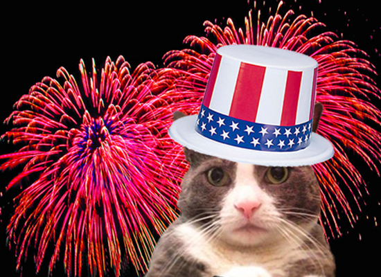 Cute Fourth of July Images