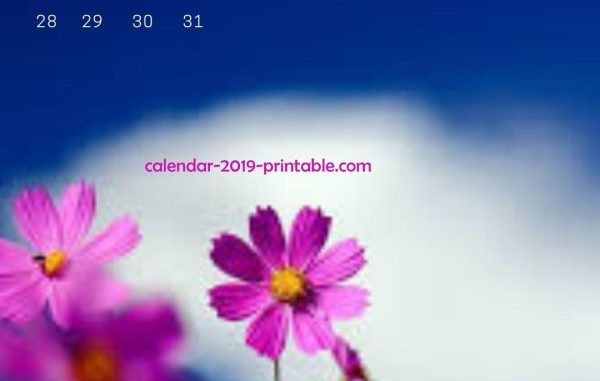 July 2019 iPhone Calendar Wallpapers Printable