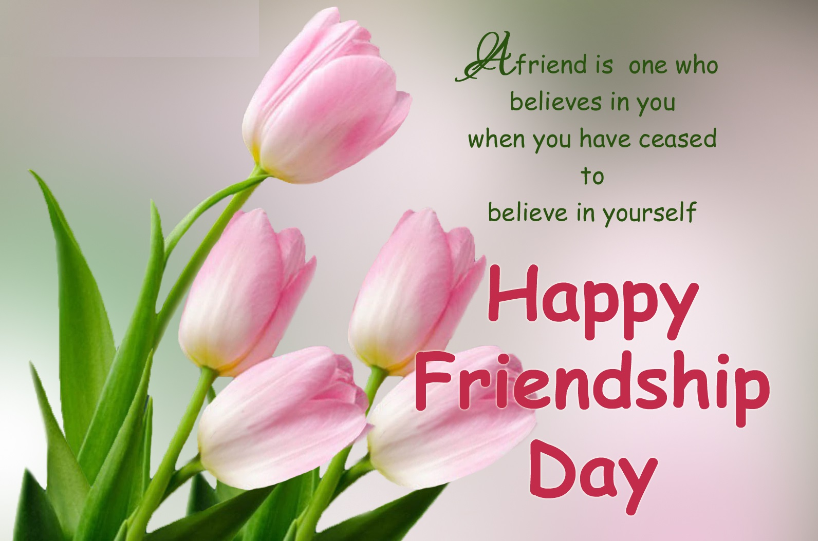 Friendship Day Cards and Messages