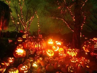 Cool Pumpkin Halloween Background Image
